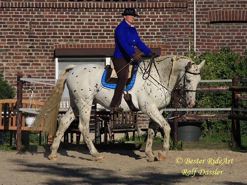 Heike Bester-Dassler mit Lobo auf dem Zirkel im Schritt beim Vorwärts-Abwärts Reiten
