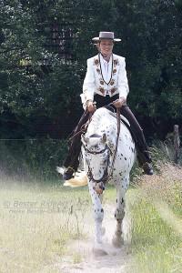 Lobo Graderichten im Vorwärts-Abwärts Juni 2008