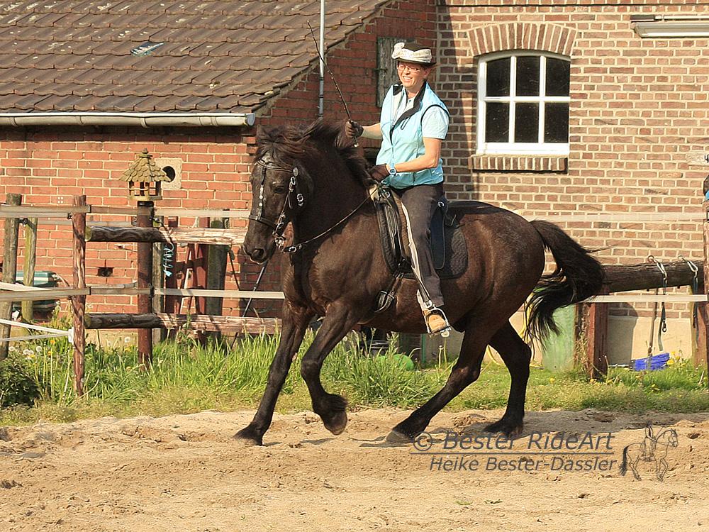 Heike und Aragon_2 Öffentliches Training 04_2014
