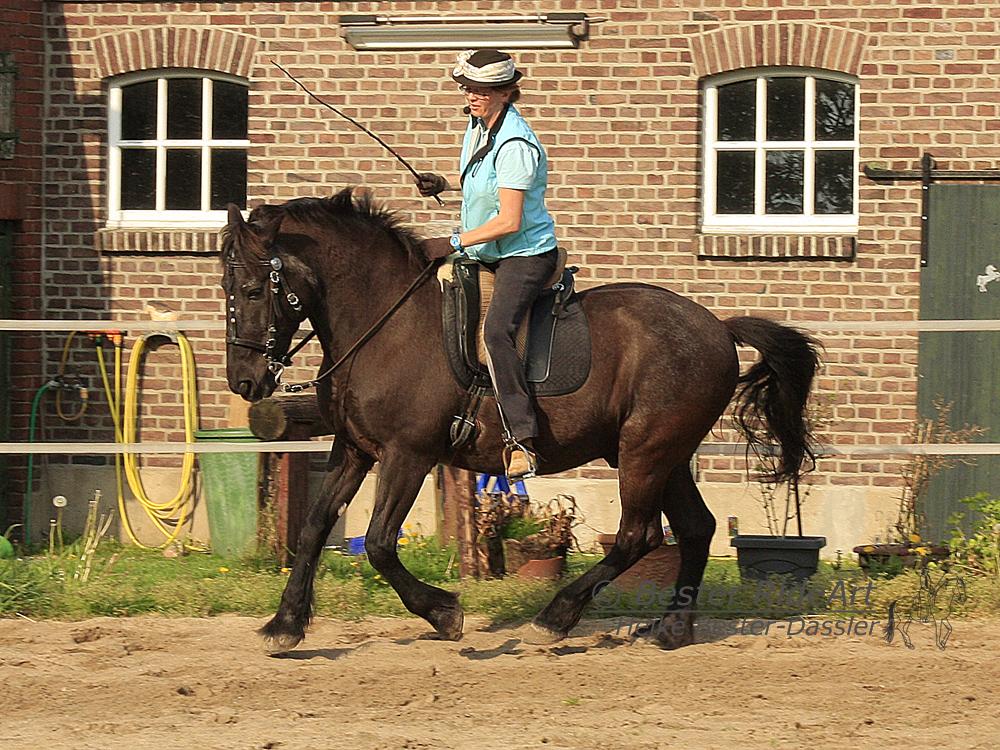 Heike und Aragon_3 Öffentliches Training 04_2014