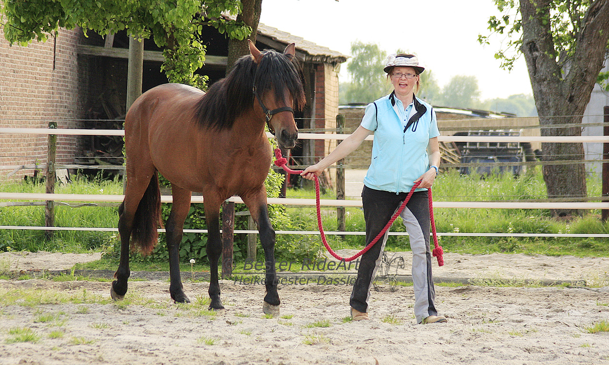 Heike und Rayo_2 Öffentliches Training 04_2014