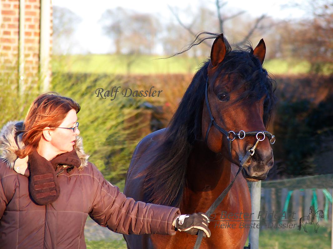 Heike und Rayo Führen Portrait 2015_02_28